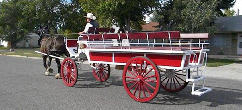 Horse Carriage long